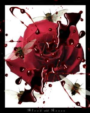 Blood_and_Roses